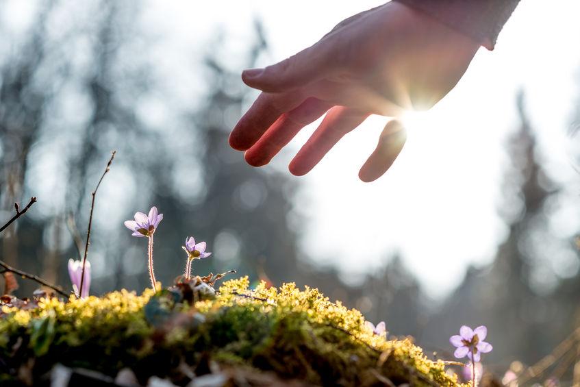 Wat is de betekenis van spirituele bewustwording