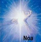 Medium Noa
