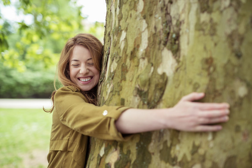 Meditatie met bomen