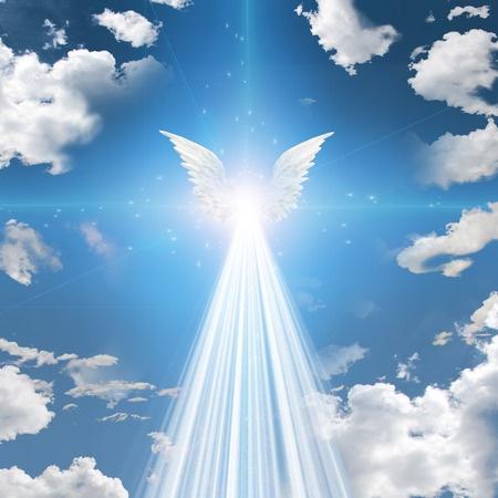 Afbeeldingsresultaat voor plaatje engel